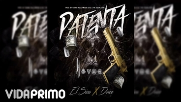 Patenta [Official Audio] - Dvice